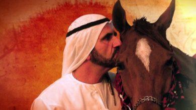 صورة حاكم دبي يعبر عن فخره برؤية فرسان العالم يتنافسون بخيولهم في دبي